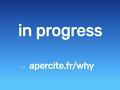 MMORPG médiéval : la guerre des dragons